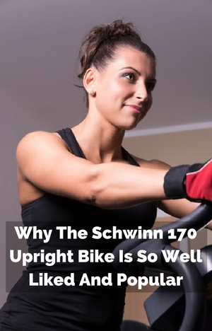 Why The Schwinn 170 Upright Bike Is So Well Liked And Popular